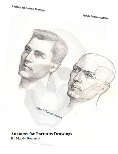 Anatomy For Portraits Drawings
